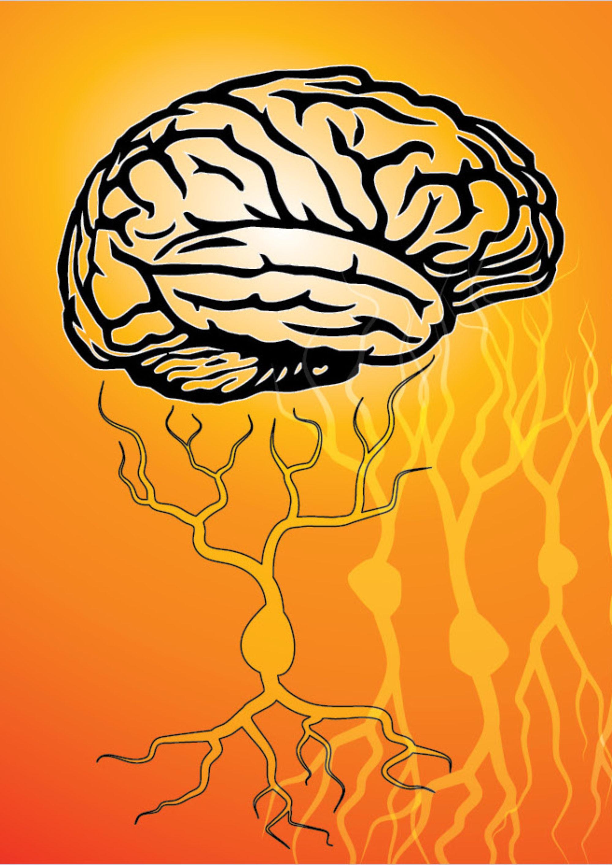 Society for Neuroscience Kansas City Chapter
